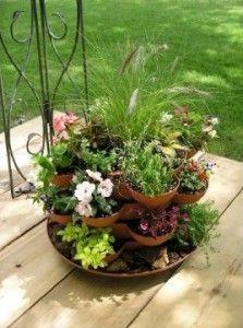 herbs outside.jpg
