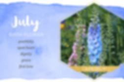 july-birthmonth-flower.jpg