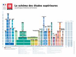 Schéma des études supérieures : les principaux itinéraires