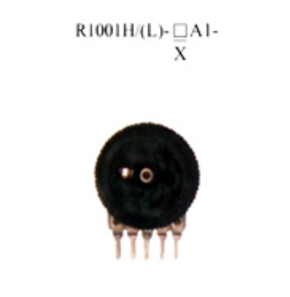 R1001H/(L)-▢A1-