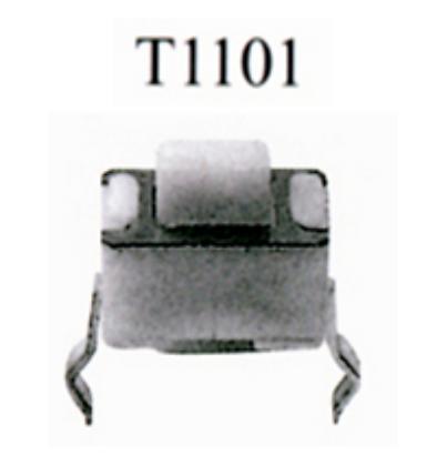 T1101