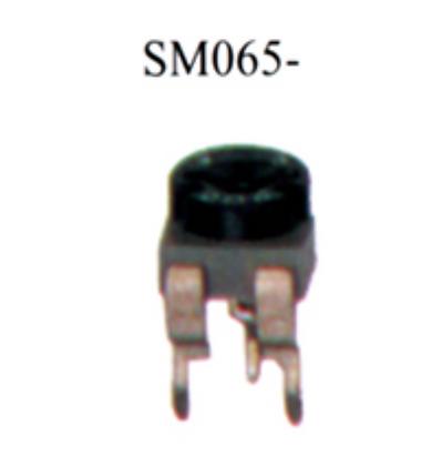 SM065-