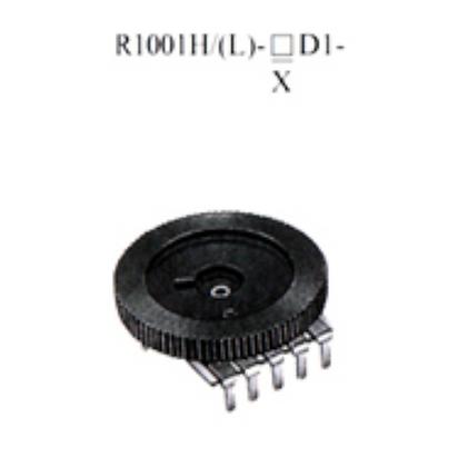 R1001H/(L)-▢D1-