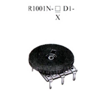 R1001N-▢D1-