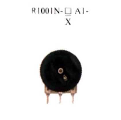 R1001N-▢A1-