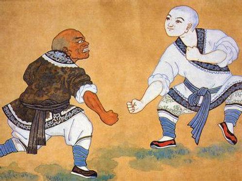 Shaolin manual Download