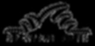 Logo_Spectrum_OnBlack 2.png