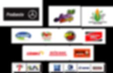 patrocinadores-site.png