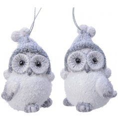 Snow Covered Hanging Owl Decoration