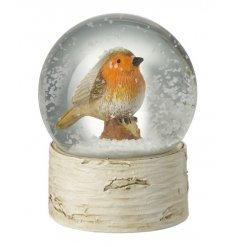 Glass Robin Snow Globe