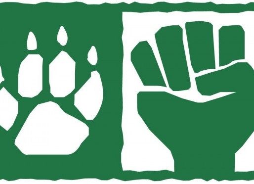 Human Rights are Animal Rights ( Yes, you read it right! )