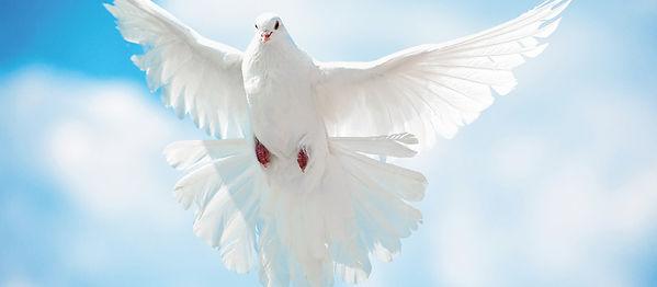 Pentecost birthday.jpg