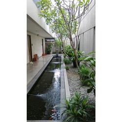 Pond @ Three J Residence