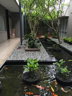 Pond @ Three J Home