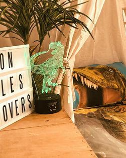 Dinosaur Sleepover.jpg