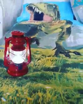 Dino Sleepover video.mp4