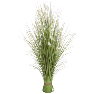 Bristle Grass Arrangement