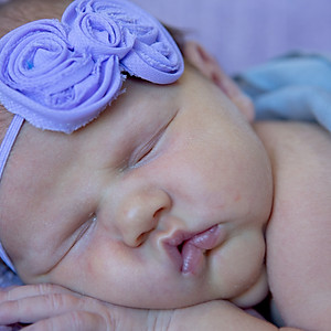 Babies and Newborns