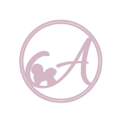 Alpha Pet Spa.png
