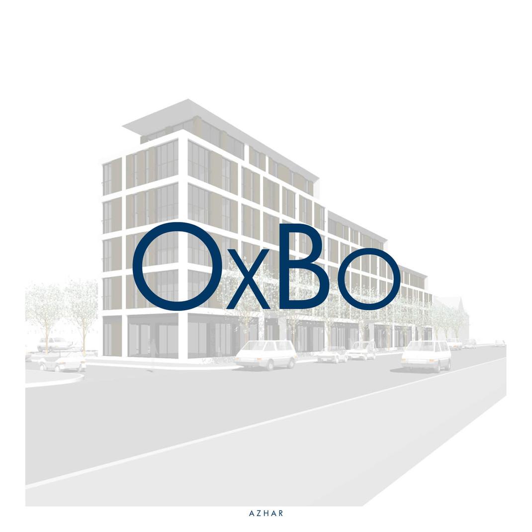 AZHAR_PROJECT_UK_Barking-Dagenham_OxBo_.
