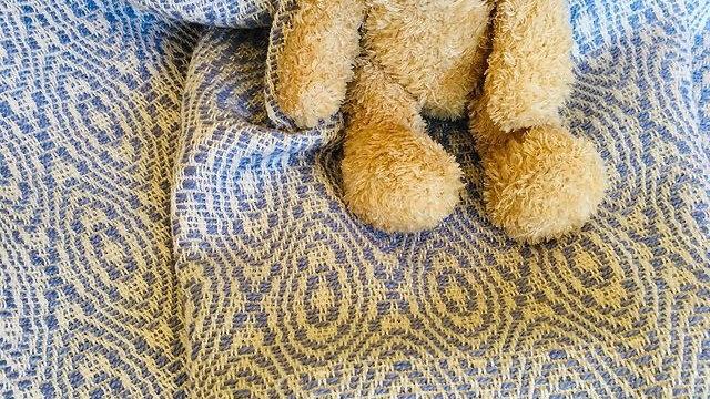 Daisy's Handwoven Heirloom Blankets