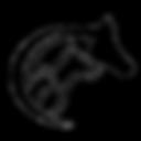 Страхование лошадей на время перевозки в ведущих страховых компаниях России и Европы. Доставка животных самолетом