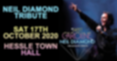 Neil Diamond Header 17th Oct 2020 .png
