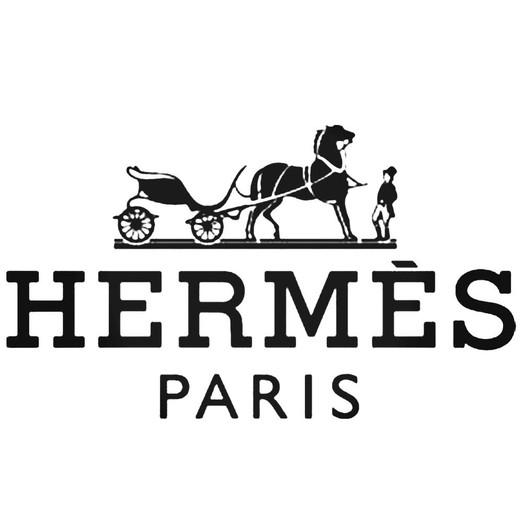 Hermes Virtualeyes.jpg