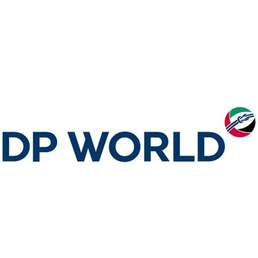 DP WORLD Virtualeyes.jpg