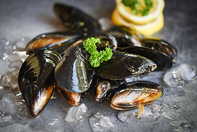 bigstock-Raw-Mussels-With-Herbs-Lemon-A-