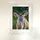 Thumbnail: Kudu Print - Multiple Size
