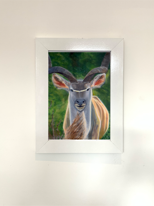 Kudu Print - Multiple Size