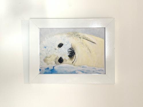 Seal Print - Multiple Sizes