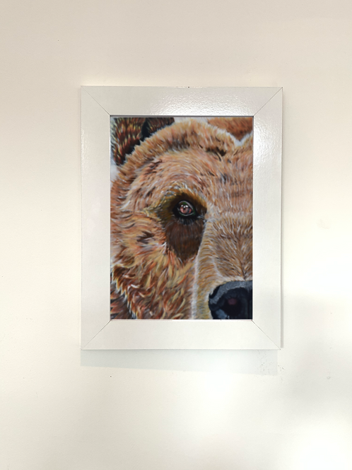 Bear Print - Multiple Size