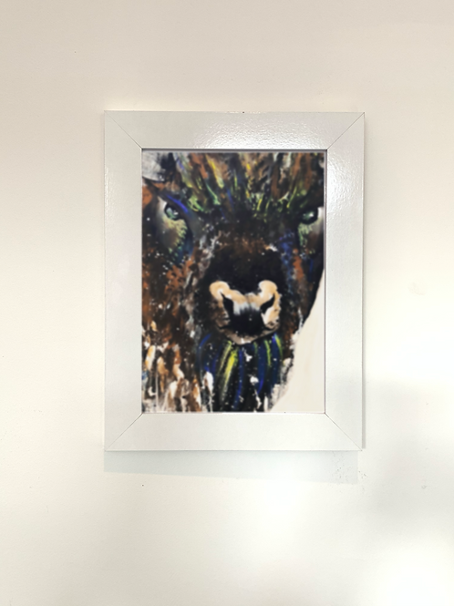 Bison Print - Multiple Size
