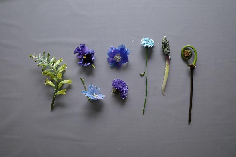 お花のお届け便(blue bouquet)