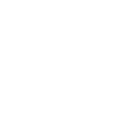 NEST_WPD2020_icon.png