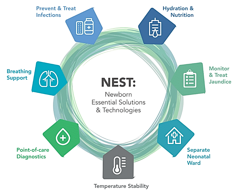 nest product categories.PNG