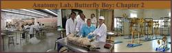 Anatomy Lab