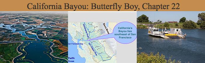 California Bayou