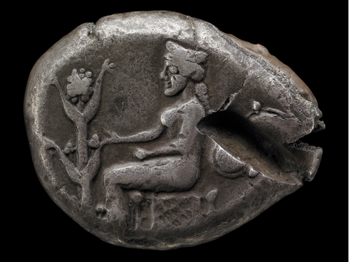 Silphium, the Ancient Birth Control Plant