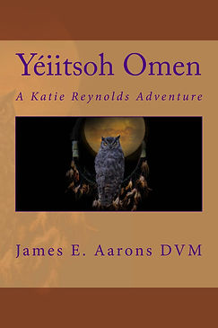 Yiitsoh_Omen_Cover_for_Kindle.jpg