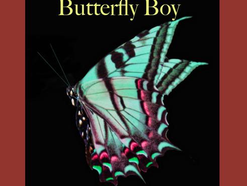 Butterfly Boy: Book 1