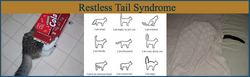 Restless Tail Syndrome