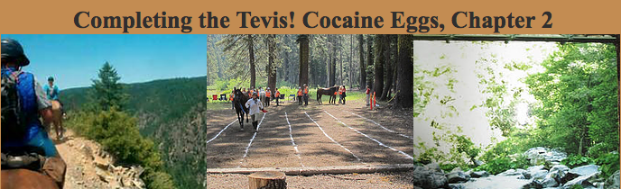 Completing the Tevis!