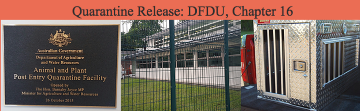 Quarantine Release