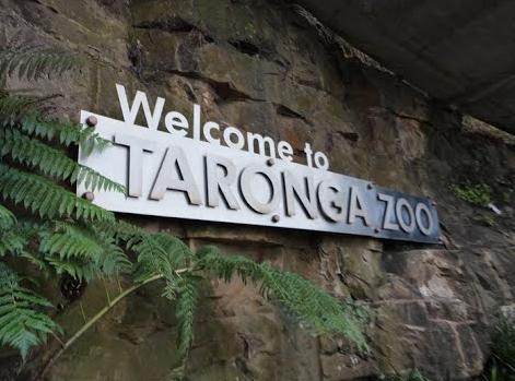 Taronga Zoo3