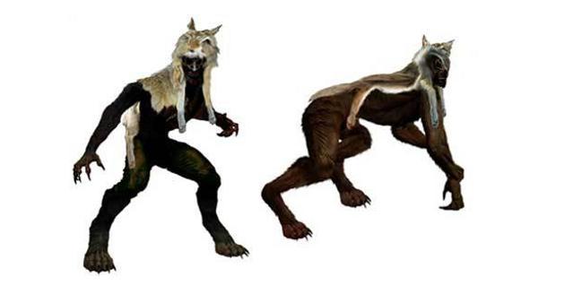 Skinwalker, Yee naldlooshii