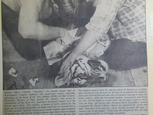 Tiger Implant