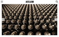 ACCLAIM: SOLE DELAY